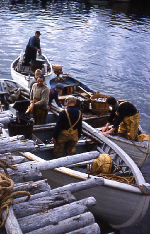 Before Fibreglass | The Wooden Boat Museum of Newfoundland & Labrador